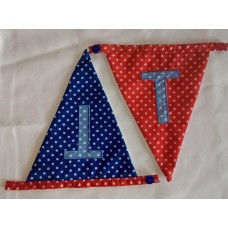 Spotted bunting T