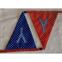 Spotted bunting Y