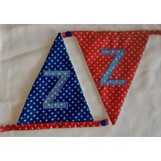 Spotted bunting Z